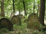 Audycja 21-08-2019 Cmentarz, wieczny odpoczynek ?